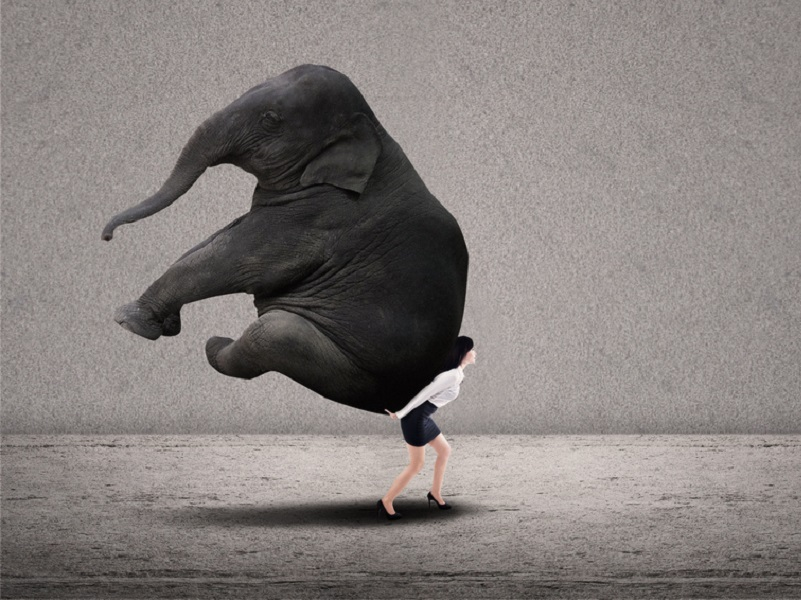 Portrait of businesswoman lifting heavy elephant over grey background