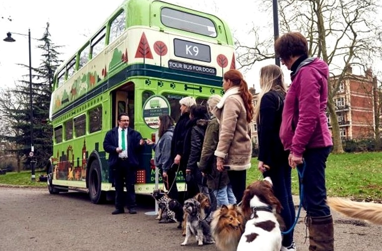1.18.17-London-Launches-World's-First-Bus-Tour-for-Dogs1