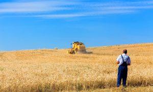 αγρότες